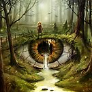 In the Eye of the Beholder by MorJer