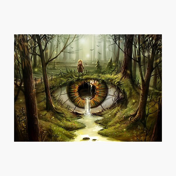 In the Eye of the Beholder Photographic Print