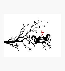squirrels on tree branch with red hearts Photographic Print