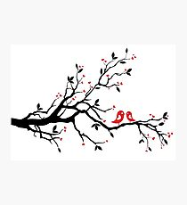 Kissing birds on love tree with red hearts Photographic Print