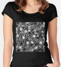 glass balls overlap Women's Fitted Scoop T-Shirt