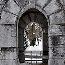 Arches at Thornrose by leslie wood