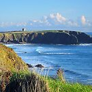 Baginbun Head, Wexford, Ireland by David Carton
