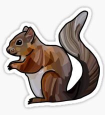 Red Squirrel Design / Illustration Sticker