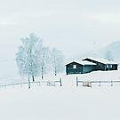 Snowfall in White Winter Landscape in Rural Scandinavia by visualspectrum