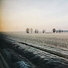 Frosted Moody Winter Landscape Shot Through Train Window by visualspectrum