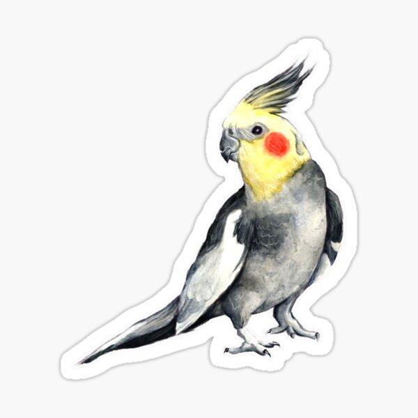 nymfparakit Sticker