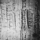 Overhead Closeup of Car Tire Mark in Parking Lot by visualspectrum