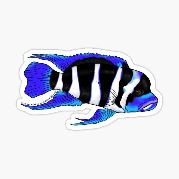 Frontosa Sticker