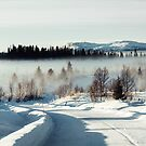 White Winter Landscape With Mysterious Fog on Sunny Day (Norway) by visualspectrum