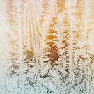 Wintertime - Close Up of Beautiful Ice Crystals in Old Window by visualspectrum