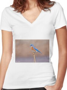 Male Western Bluebird Perched on a Stalk Women's Fitted V-Neck T-Shirt