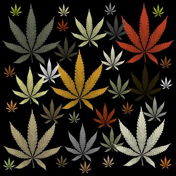 Marijuana Cannabis Weed Multicolored Black Background by MarijuanaTshirt