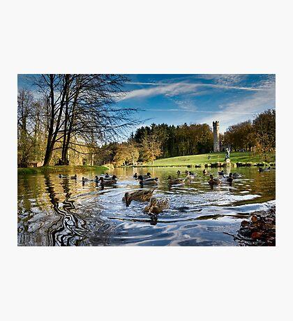 Hardwick Park, Sedgefeild Photographic Print