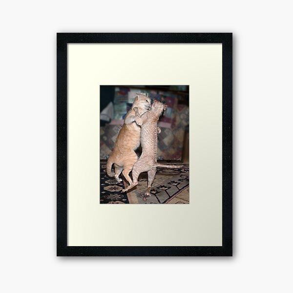 Cover image (cat calendar) Framed Art Print