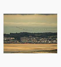 Migration over Padstow Photographic Print