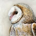 Barn Owl Watercolor by Olga Shvartsur