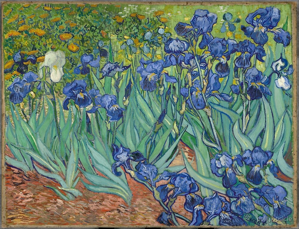 Irises by pollylopsicle