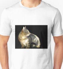 Barn Cat in the Sunbeams T-Shirt
