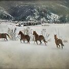 Loose Horses by kayzsqrlz