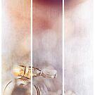 Sanborn (experienced) by Bob Daalder