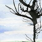 Ink tree on watercolour by Simon Rudd