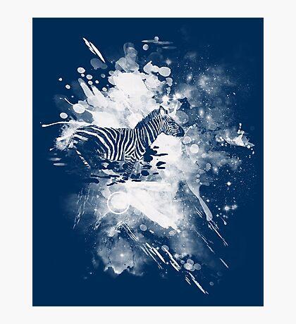 zebra splashed  Photographic Print