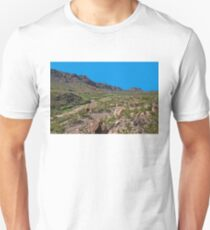 Desolate T-Shirt