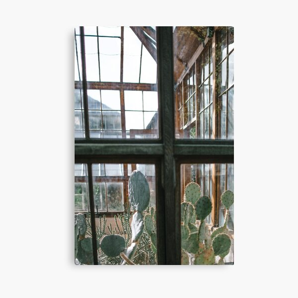Greenhouse Window II | Nature and Landscape Photography Canvas Print