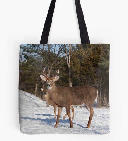 White-tailed deer buck and fawn in the winter snow Tote Bag