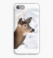 White-tailed deer buck in the winter snow iPhone Case/Skin