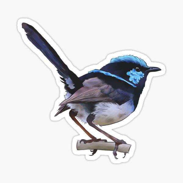 superb fairy wren birdy Sticker