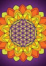 Flower of Life by Carrie Dennison