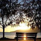 Sunrise Seat by GumLeaf