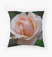 Peaches'n cream Throw Pillow