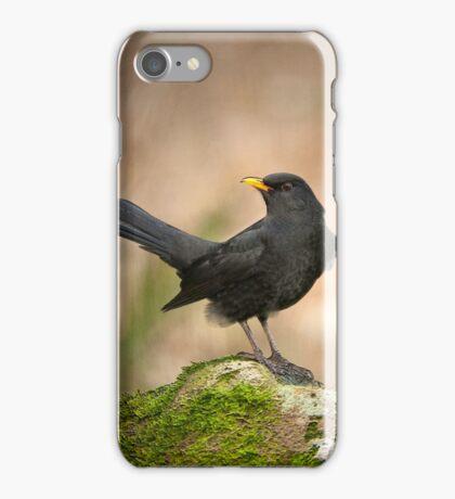 Blackbird on moss rock iPhone Case/Skin
