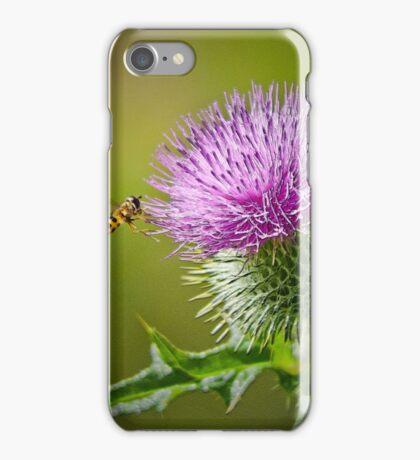 Bull Thistle iPhone Case/Skin