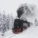 Hexen-Express by Noirerora