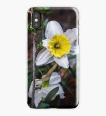 Contrasting Nature iPhone Case