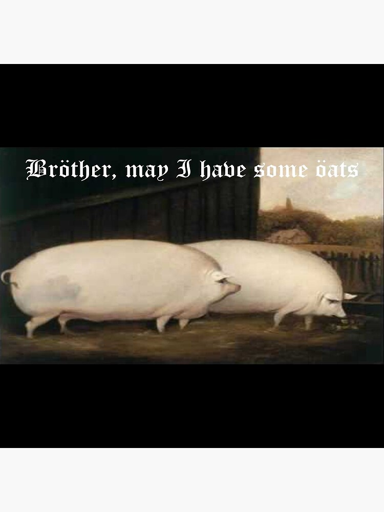 Brother May I Have Some Oats Pig Meme Art Board Print By Vyrlstuffz Redbubble