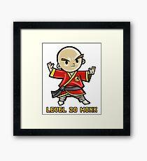 Level 20 Monk Framed Print