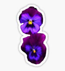 Purple Pansy Sticker  Sticker