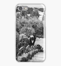 Winery view iPhone Case/Skin