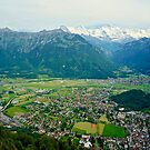 A Lookout Over Interlaken by Edwin Davis