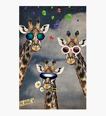 Animal Collection -- Lets Take A Selfie Photographic Print