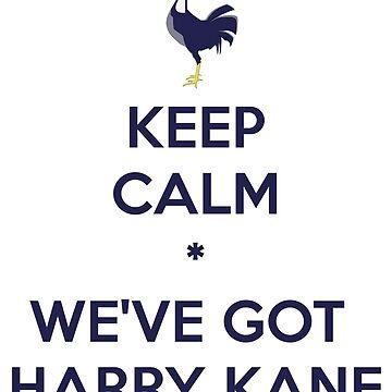 Mantenga la calma * Tenemos a Kane de elmindo