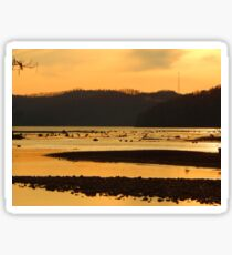 Tennessee Marsh Sticker