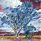 Australian Windswept Tree 02 by f4foto