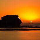1185 Sunset Sillouette by DavidsArt