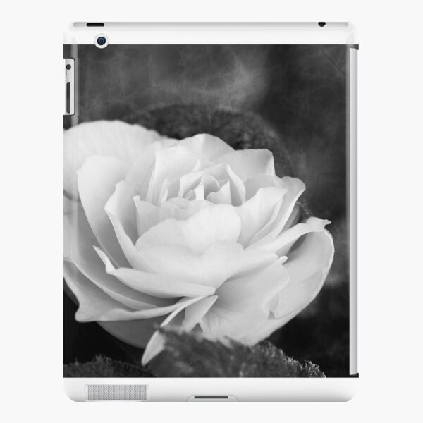 Rose Begonia In Black And White iPad Snap Case